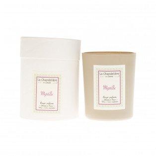 Bougie végétale parfumée myrtille